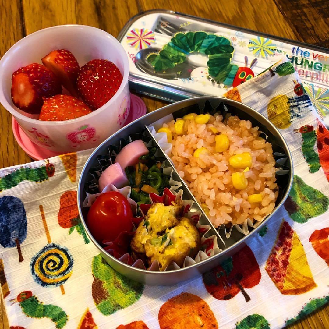ねねにゃんの今週の幼稚園弁当。