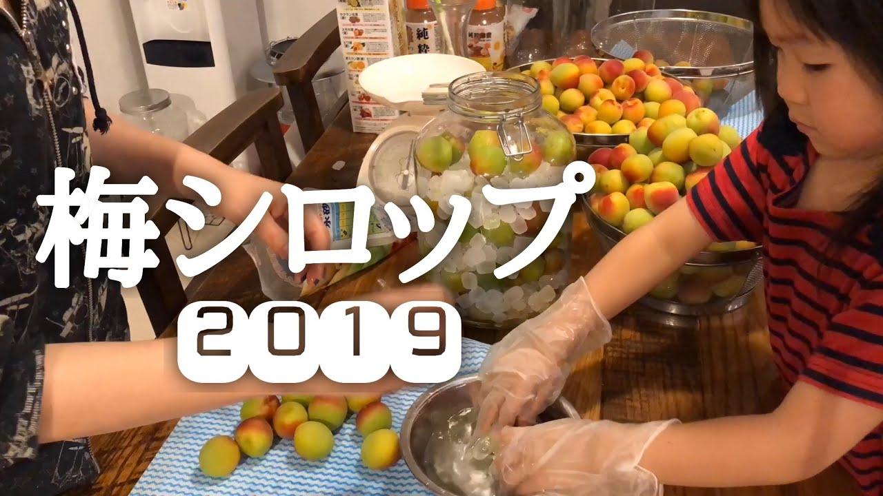 梅シロップ 仕込み – 2019
