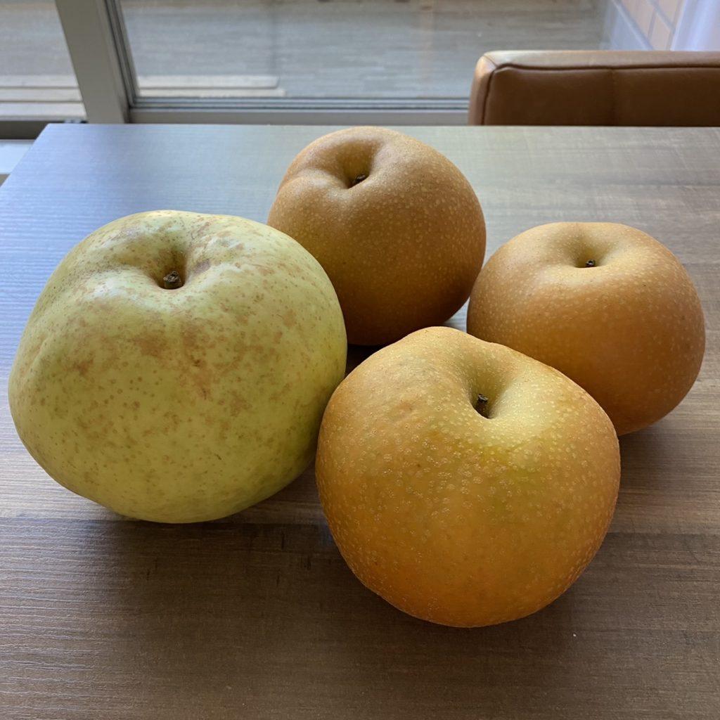 地元名産の梨 – 白井の梨